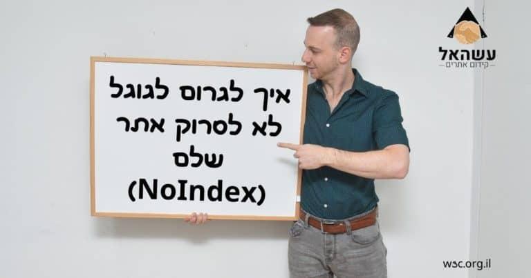 איך לגרום לגוגל לא לסרוק אתר שלם NoIndex